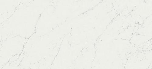 Фото плитки Marvel Carrara Pure, размер 50X110